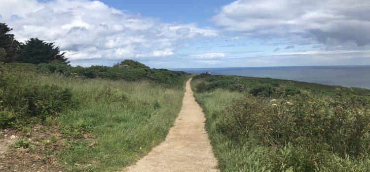 De natuur als inspiratiebron: een zestal lessen van Thoreau.