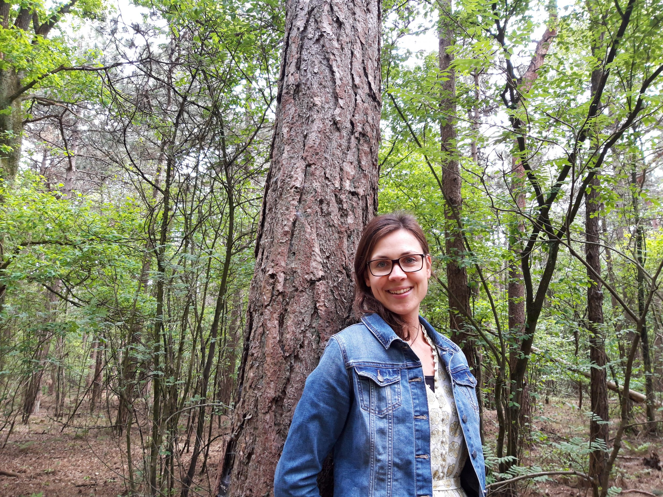 wandelcoach natuur inspiratie wandelen podcasts interiews lichtpuntjes groen