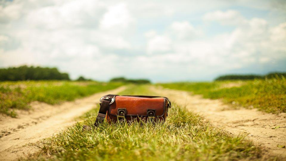 zin in de zomer wandelcoaching themawandeling
