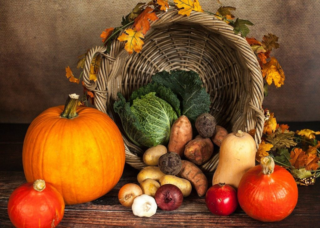 samhain herfst jaarwiel jaarfeest